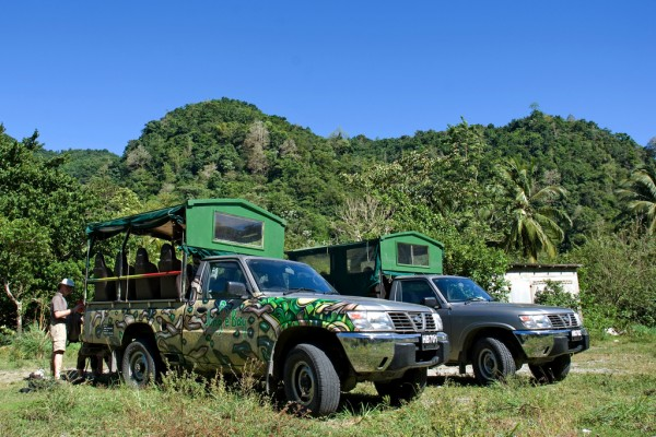 Dominica safari adventure